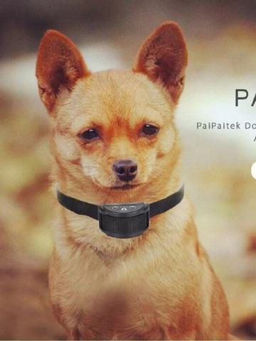 PaiPaitek PD-258S