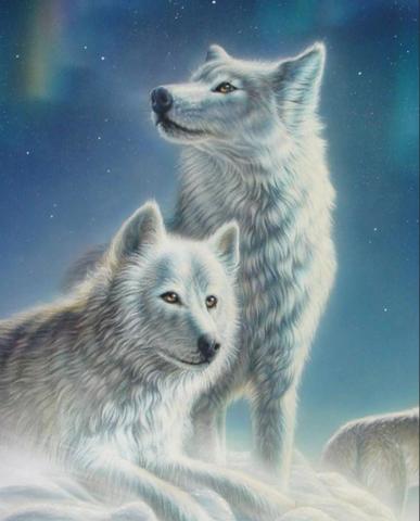 Алмазная Мозаика 40x50 Волк и волчица зимой (арт. GA74739)