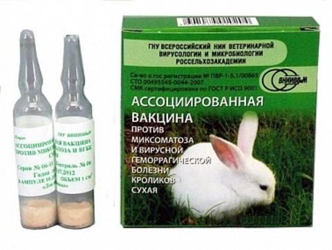 Вакцина против миксоматоза и ВГБК