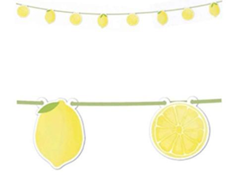 Гирлянда Лимоны 2,30м/P