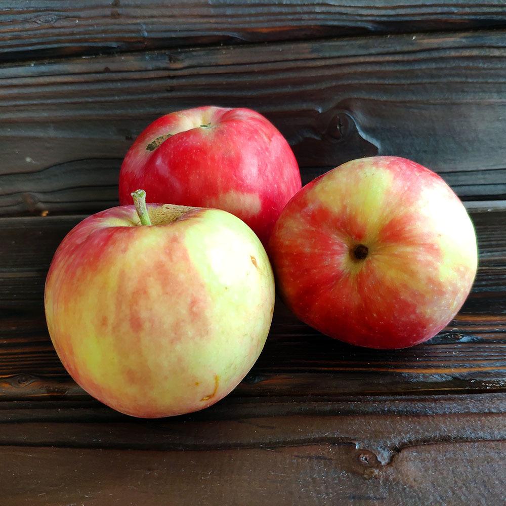 Фотография Яблоки свежие сезонные деревенские / 1 кг купить в магазине Афлора