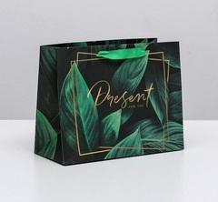 Пакет ламинированный горизонтальный Present for you, MS 23 × 18 × 10 см, 1 шт.