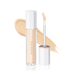 Консилер DEAR DAHLIA Skin Paradise Flawless Fit Expert Concealer 6.5g