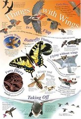 Things With Wings chart (laminated, 520x760mm)