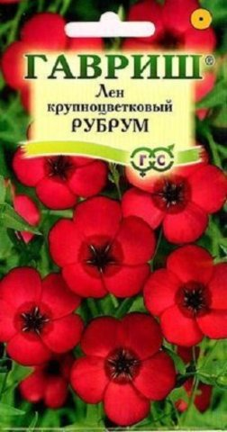 Лен крупноцветковый Рубрум, 0,5г