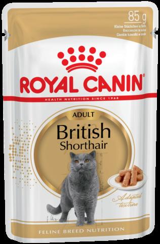 Влажный корм для кошек британской короткошерстной породы в возрасте от 1 года