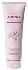 Маска для окрашенных и тонированных волос АРОНИЯ Pedison Institute-beaut Aronia Color Protection Treatment, 100 мл