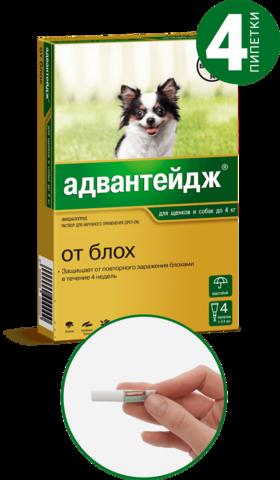 Адвантейдж для собак до 4 кг   4 пип.