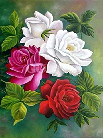 Картина раскраска по номерам 30x40 Белый, розовый и красный цветок