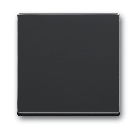Клавиша одноклавишного выключателя/переключателя/кнопки. Цвет Антрацит. ABB (АББ). 1751-0-3079