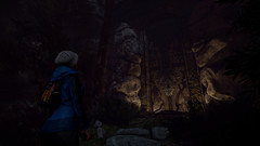 Through the Woods (для ПК, цифровой ключ)