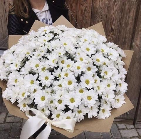 27 кустовых хризантем в оформлении #1962