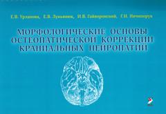 Морфологические основы остеопатической коррекции краниальных нейропатий. Учебное пособие