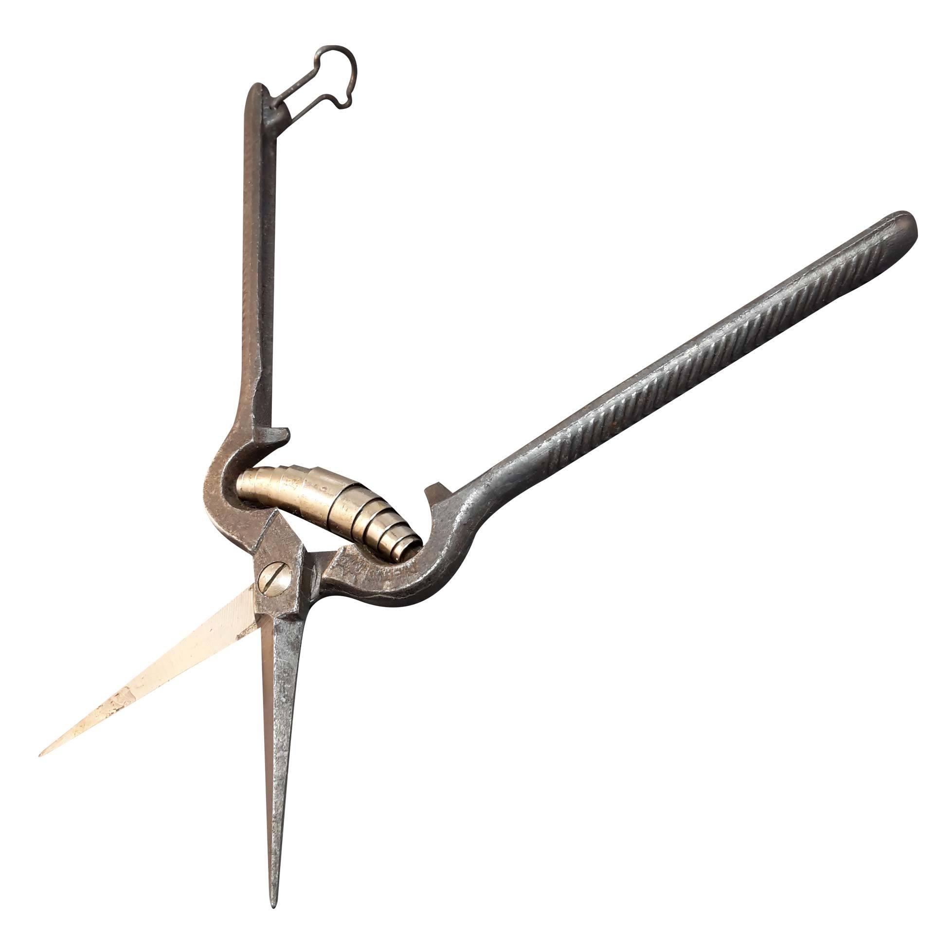 Ножницы для винограда Due Buoi 145/18S