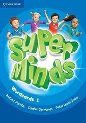Super Minds Wordcards 1
