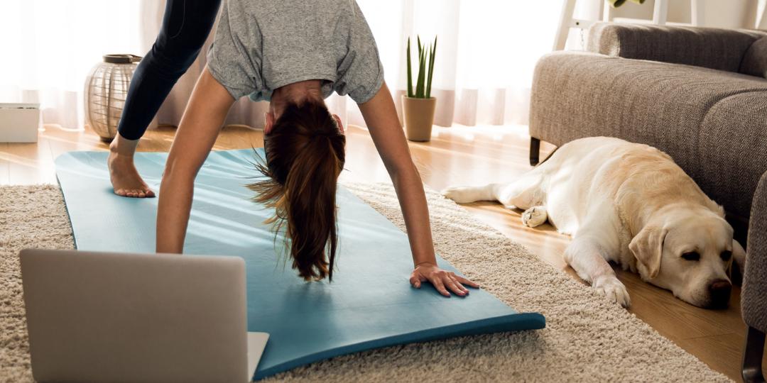 Fitness online: beneficios y daños фото