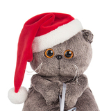 Кот Басик и новогодний колпачок