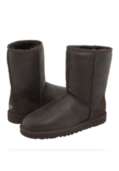 UGG Classic Short Metallic Chocolate Men