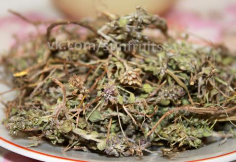 Чабрец ароматный из Армении
