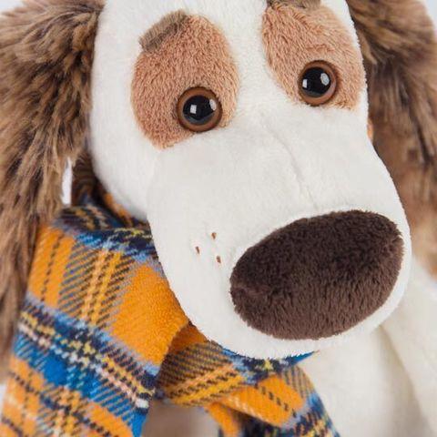 Пес Бартоломей в шарфе