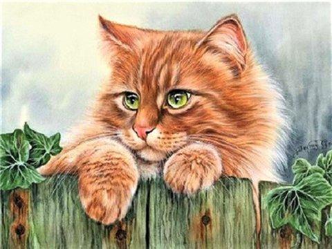 Алмазная Мозаика 30x40 Рыжий кот на заборе