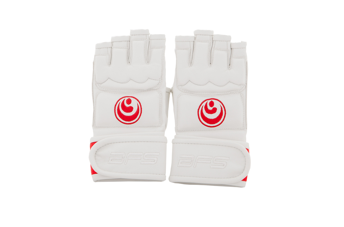 Перчатки Перчатки BFS - SHINKYOKUSHINKAI / Pro bfs-pro-perch-SHIN-1.jpg