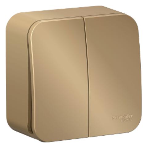 Выключатель двухклавишный накладной 10А. 250В. Цвет Титан. Schneider Electric Blanca. BLNVA105014