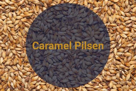 Солод Карамельный Светлый / Caramel Pilsen, 20-40 EBC, 1 кг