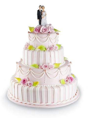 вес торта на картинке 25 кг
