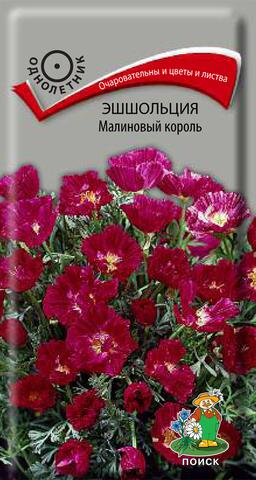 Эшшольция Малиновый ковер 0,2г Поиск