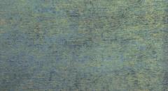 Шенилл Tiana caribbean (Тиана карибеан)