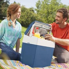 Купить термоэлектрический автохолодильник 12в и 220в MobiCool U30 DC