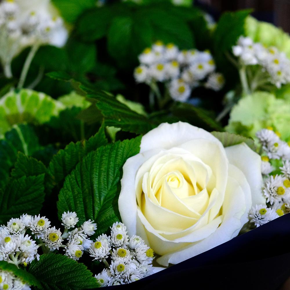 Купить букет белые розы Пермь