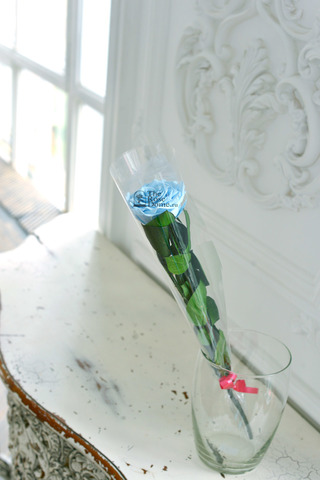 Стабилизированная роза на стебле премиум вип голубая