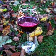 Напиток с красным вином 'Бриз' 'Леовит',