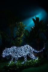 Световая Пантера
