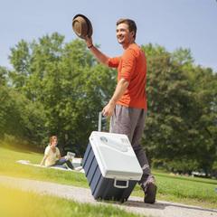 Купить термоэлектрический автохолодильник 12в и 220в MobiCool W40 AC/DC, 40л, охл., колеса, пит. (12/24/220V)