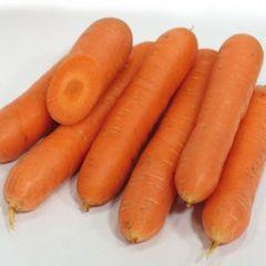 Нирвана семена моркови нантской (Гавриш)