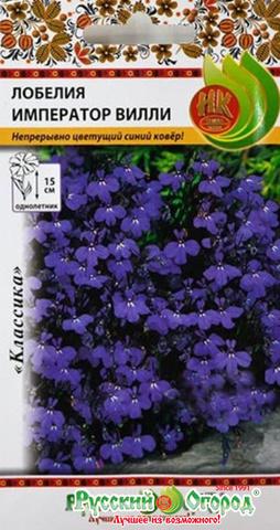 Лобелия Император Вилли Русский Огород