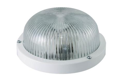 Светильник НПП 03-60-001 (металл, стекло прозр.) IP65 TDM