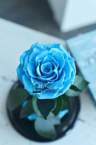 Роза King Выс*Диам*Бутон (30*18*12см) Цвет голубая
