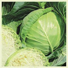 Нахаленок F1 семена капусты белокочанной (Гавриш)