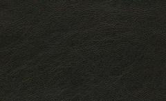 Искусственная кожа Mercury black 620 (Меркури блэк)