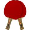 Ракетка для настольного тенниса Donier SP-12 PRO CV