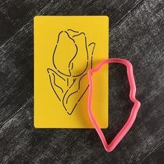 Тюльпан №16