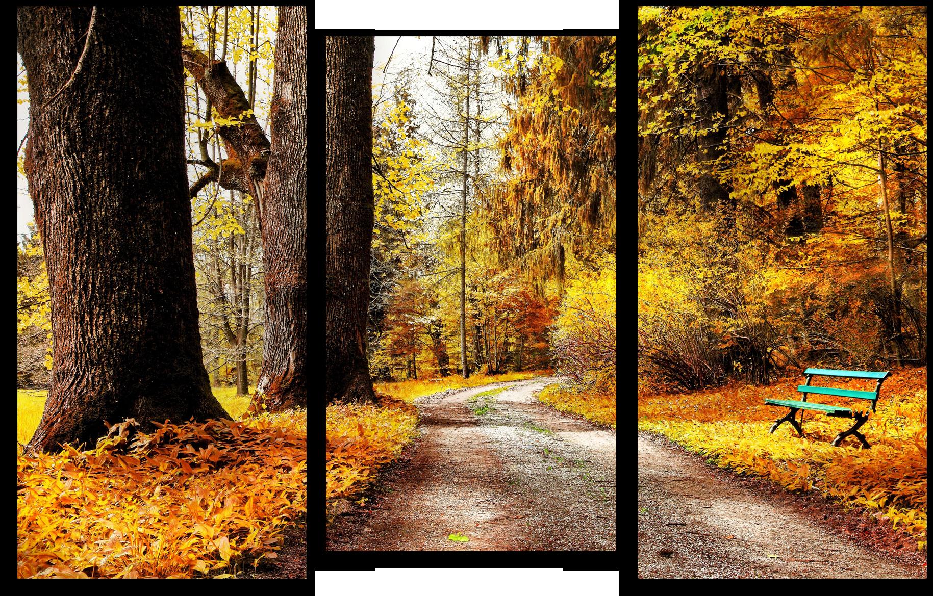"""Модульные картины Модульная картина """"Осенняя тропа"""" М181.png"""