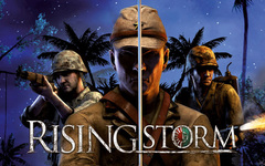 Rising Storm (для ПК, цифровой ключ)