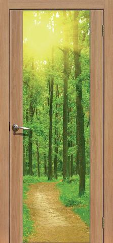 Дверь La Stella 303 фотопечать с одной стороны (Утро в лесу), фотопечать с одной стороны, цвет дуб сантьяго, остекленная