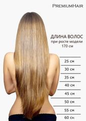 Натуральные волосы на заколках тон 10 пепельно-русый
