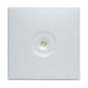 Аварийные светильники потолочного типа ZONESPOT II MIDBAY – вид спереди